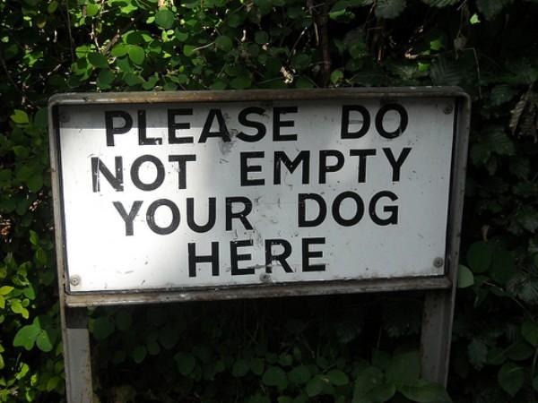 empty_dog.jpg